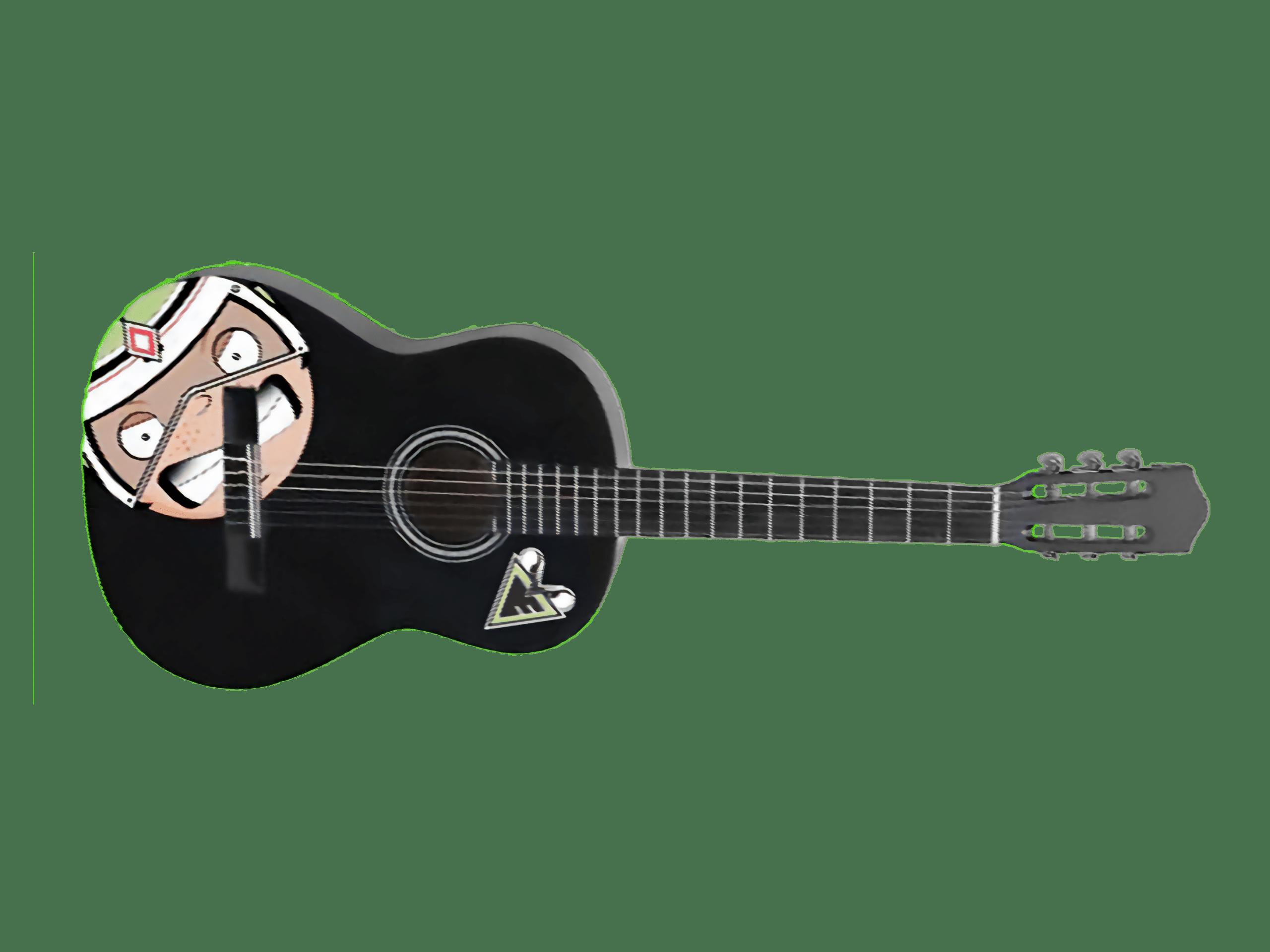 Aufbau einer Gitarre und Zubehör