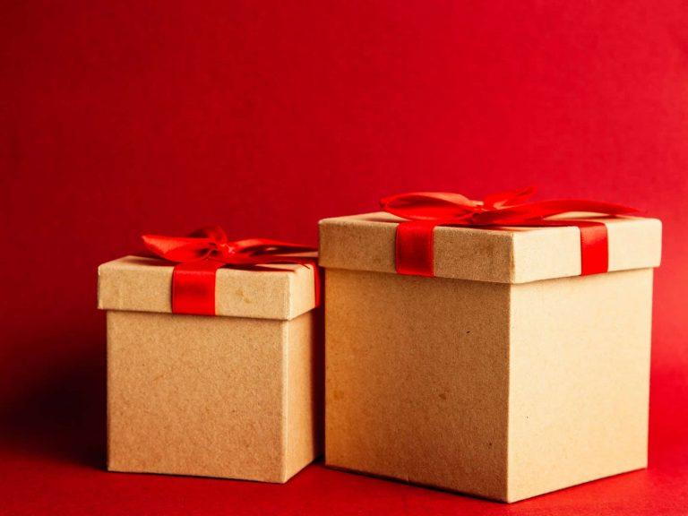 Unser Weihnachtsgeschenk 2020